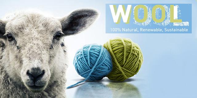 Wool_atrikel